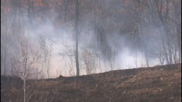 Schuylkill County issues temporary open burning ban