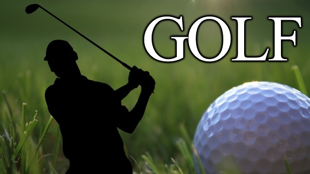 Local golfers win at PIAA Qualifier