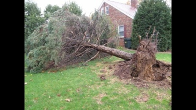 5 weather-related deaths in Pa. from Hurricane Sandy