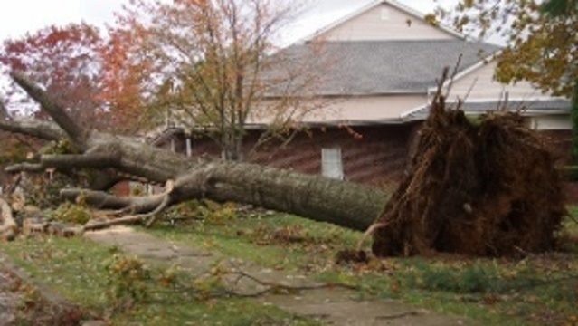 Pa. declared disaster area; Sandy victims eligible for FEMA aid