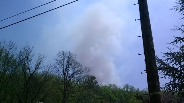 State official: Brush fire on Mount Penn appears suspicious