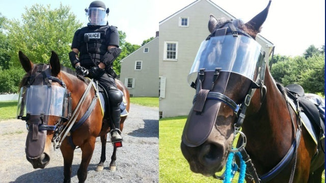 Mounted Police ready for anything