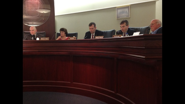 Airport Authority gets flak from county council over possible sale of Braden Airpark