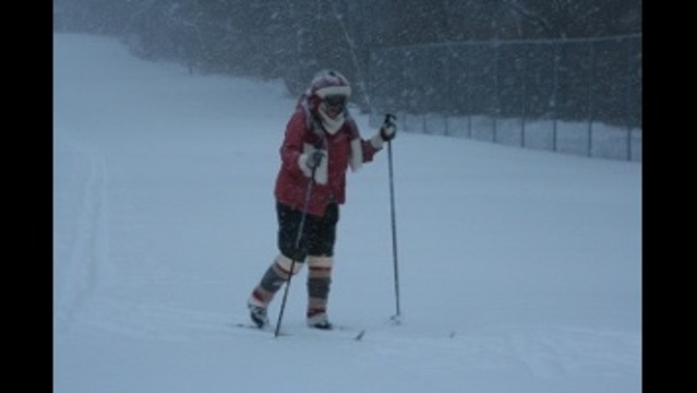 Cross country skier_24044236