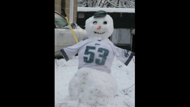 Frosted Eagles Fan_24269514
