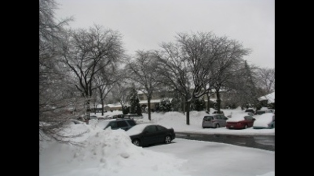 Parking Woes_24304222