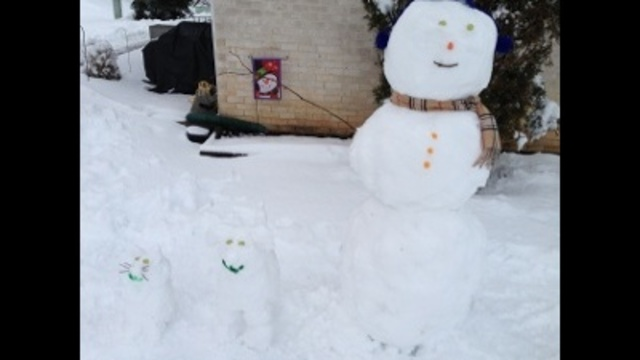 Snowman, snow kitty and snow dog!_24269172