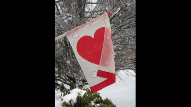 Valentine's Day flag during ice storm_24303758