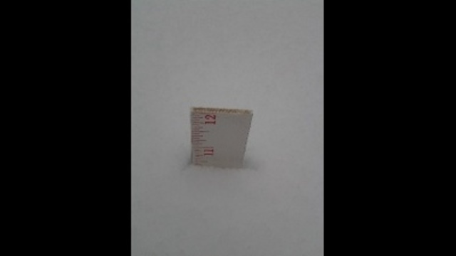 snowfall measurement_24264820