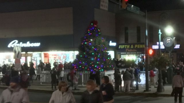 Reading opts for artificial Christmas tree; mayor wants 'Charlie Brown Tree' on mountain