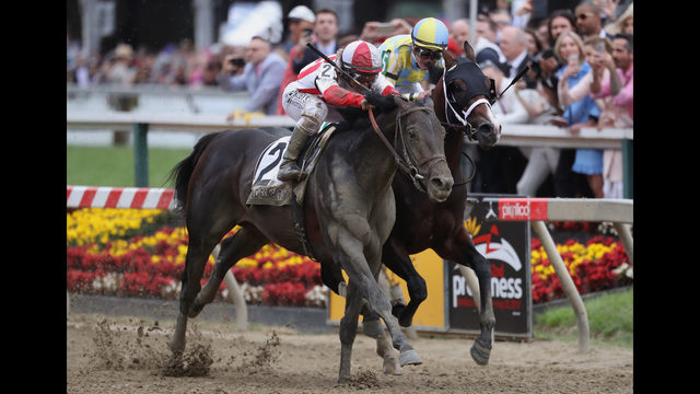 13-1 shot Cloud Computing springs upset in Preakness